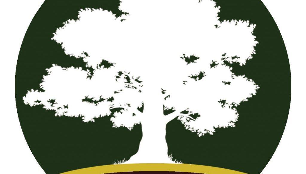 TreeCirclecropped 1